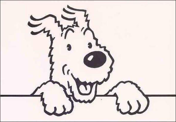 Comment s'appelle le chien de Tintin ?
