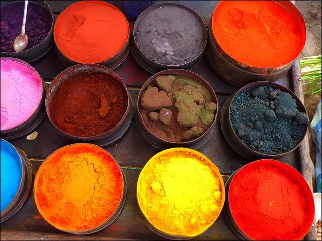 Toutes les plantes possèdent-elles des colorants ou des pigments qui permettent de teindre et d'écrire ?
