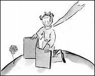 Pourquoi le Petit Prince se désole-t-il de n'avoir pas écouter la rose ?