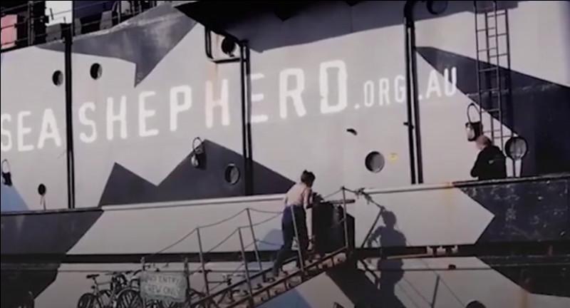Connaissez-vous Sea Shepherd, non ? C'est tout simplement une organisation qui lutte contre le braconnage et la pêche illégale pour protéger des espèces en danger de disparition. Mais pour ça pas de manifestations, pas de banderoles ou de pétitions, simplement des actions. Sea Shepherd se considère elle-même comme des pirates pour le bien. Mais comment se nomme le capitaine de Sea Shepherd ?