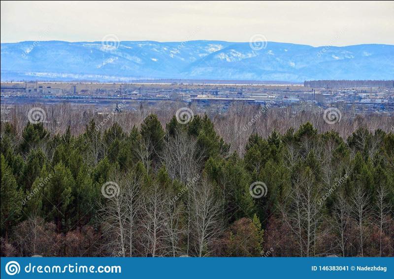 La Sibérie est une région où les températures son extrêmes : -68 C° en hiver. La ville de Verkhoïansk vient de battre un nouveau record de température, le juin dernier, 18 C° de plus que la température normale à cette saison. Quel est ce nouveau record ?