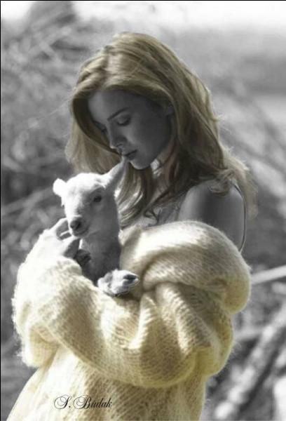 Quel est le père de l'agneau ?