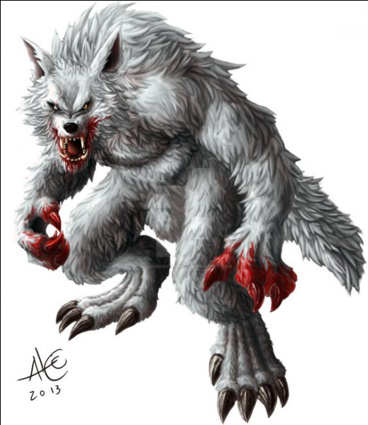 Le but du loup-garou blanc est de :