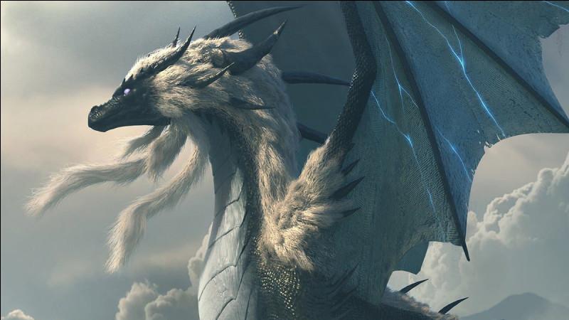 Que fait le grand dragon ?