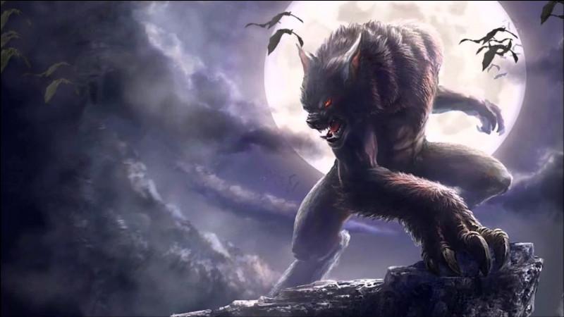 Combien y a-t-il de personnages différents dans l'équipe des loups garous ?