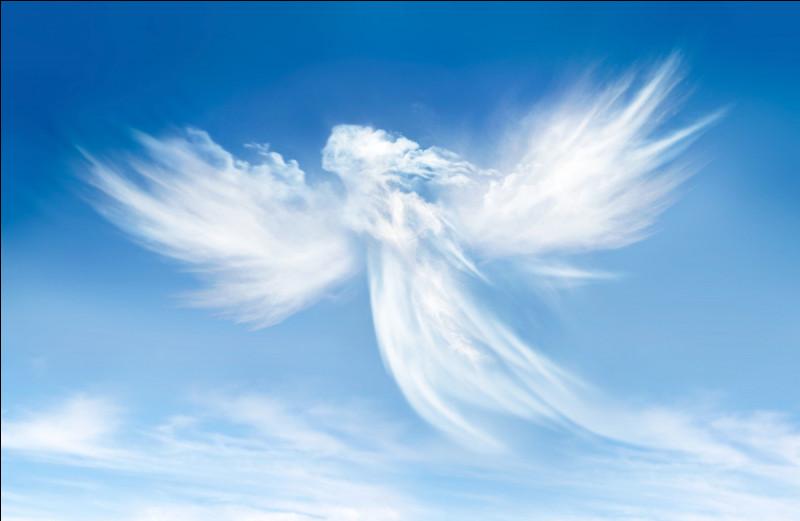 Imagine que tu es l'ange. Tu dois mourir :