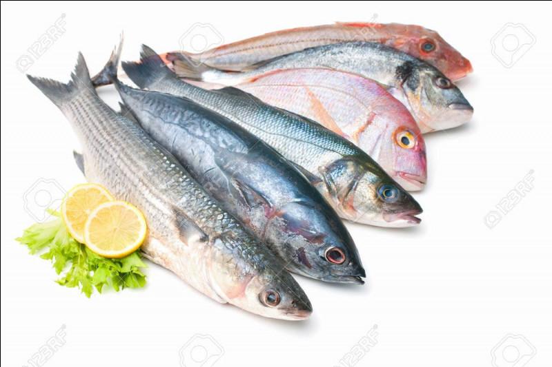 Toutes les émotions de cette demi-journée nous ont donné faim. Nous sommes d'ailleurs juste devant un restaurant, nous entrons et nous commandons une assiette de frites et poisson pour chacun.D'ailleurs comment dit-on poisson en anglais ?