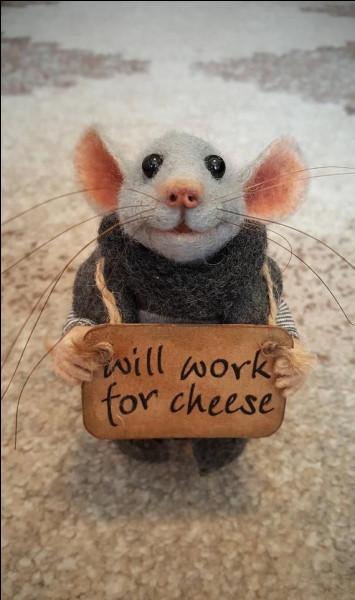 Selon l'expression, à quelle occasion vais-je avoir envie de passer dans un trou de souris ?
