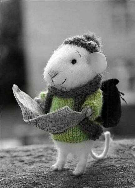 Qu'est-ce que la souris de Moscovie ?