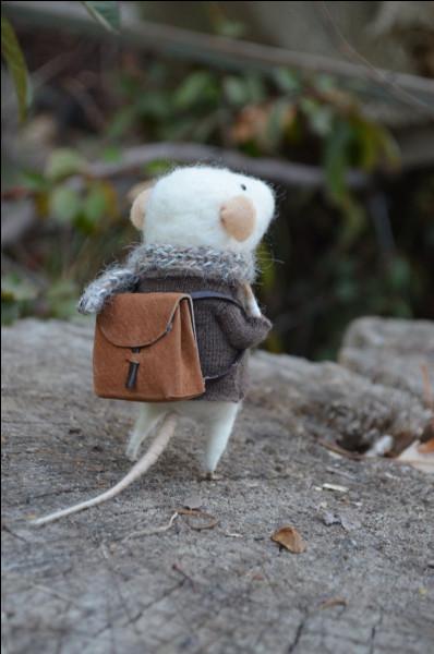 """En contrepartie de quoi la """"petite souris"""" apporte-t-elle une pièce ou un cadeau sous l'oreiller ?"""