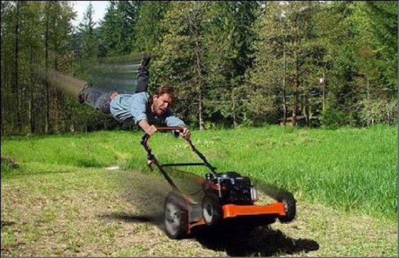 Un jardinier qui sabote une pelouse est un assassin en herbe !