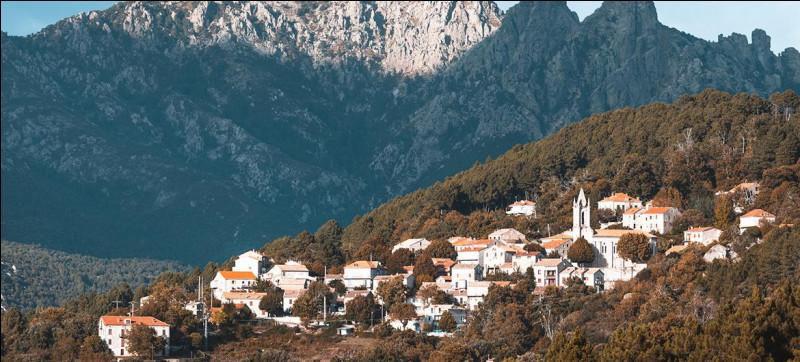 Commune du département de la Corse du Sud (2A) peuplée de 2700 habitants.Le village appartient à la piève de Carbini, en Alta Rocca - Le Golfe de Pinarello - Le Musée de la Résistance en Alta Rocca.