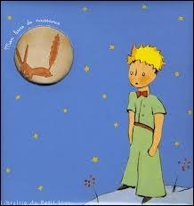 Le Petit Prince demande à Saint-Exupéry :