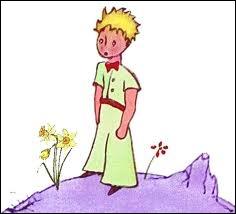 La planète du Petit Prince était :
