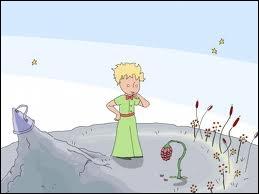 Complétez : 'Les fleurs sont faibles... elles sont naïves. Elles se rassurent comme elles peuvent' :