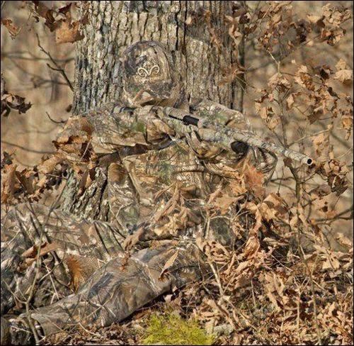 Un primate se cache sur la photo !