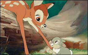 Quel est le premier mot que Bambi prononce lorsqu'il voit le jour ?