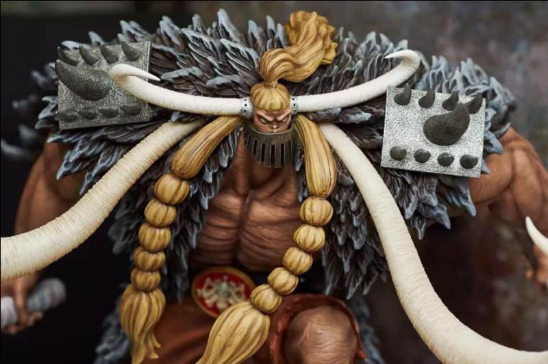 Qui sont les 3 Okanban de Kaido (3 meilleurs subordonnés) ?