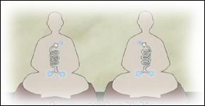 Quel est le sens de rotation du chakra de Naruto ?