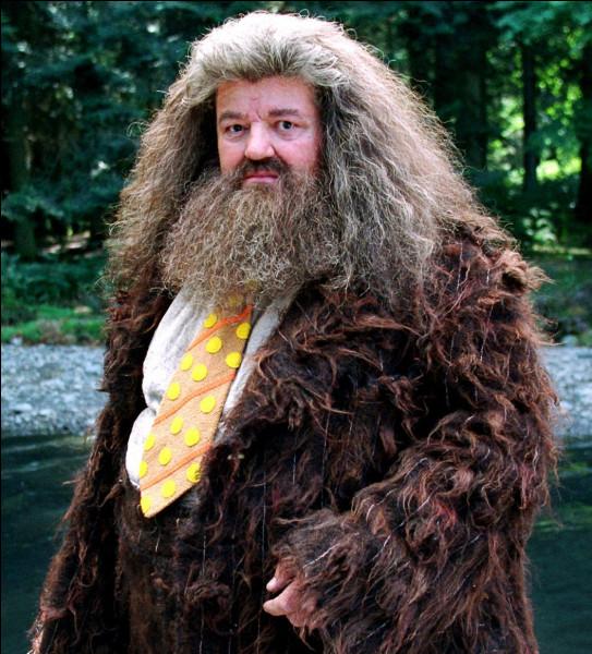 Dans le 1, comment s'appelait le dragon d'Hagrid ?