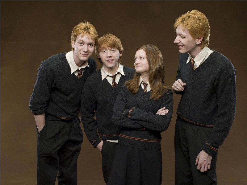 De quelle maison la famille Weasley fait-elle partie ?