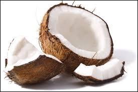 La noix de coco est le fruit du :