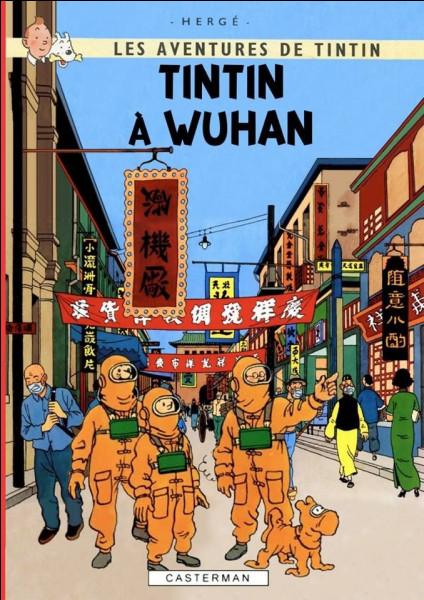 Mis à part le titre et quelques masques, cette couverture s'inspire de deux albums de Tintin : lesquels ?