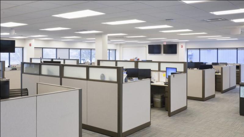 Nous arrivons dans ce lieu, où de nombreux bureaux se trouvent. Secrétaires, comptables, chargés des ressources humaines, avocats se côtoient. Quelle est la couleur de la pièce ?