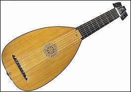 Quel est cet instrument de musique à cordes pincées ?