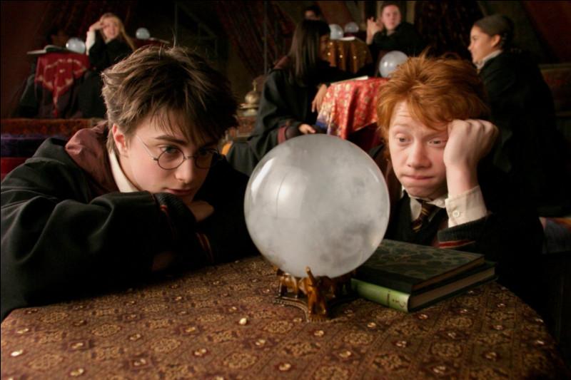 De qui Hermione est-elle amoureuse en premier ?