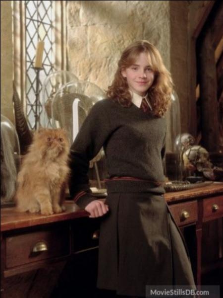 En cinquième année, Hermione, voyant que personne ne s'intéresse à son association se met à agir toute seule :