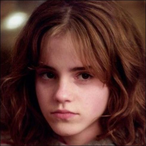 Quel animal Hermione souhaite-t-elle s'acheter pour ses 14 ans ?
