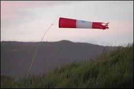 """En anglais, le mot """"vent"""" se dit """"wind""""."""