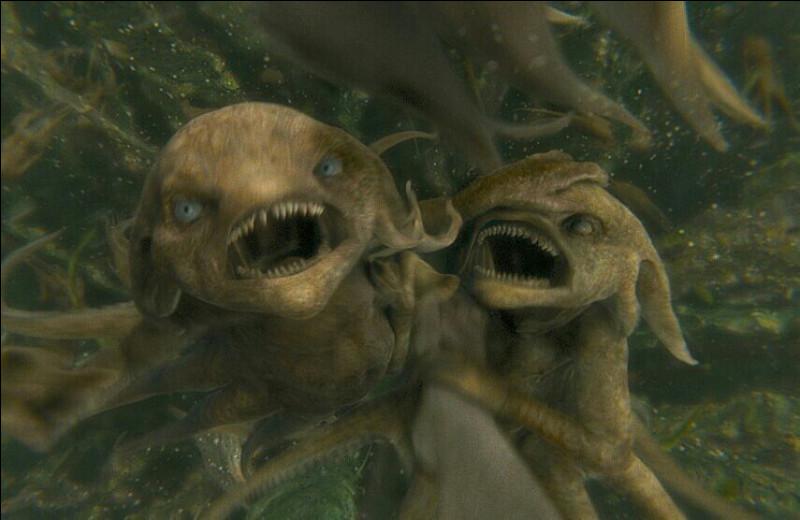 Comment s'appelle cette créature sous-marine ?