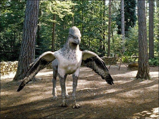 Comment s'appelle cette créature ?