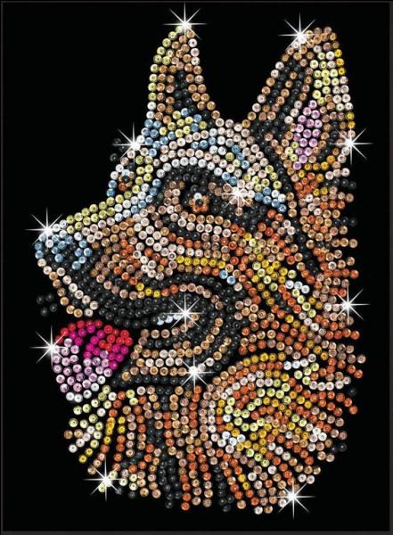 Où est né le chien nommé Rintintin qui joua, durant des années, ce rôle dans la série télévisée éponyme ?