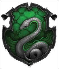 Qui sont les Serpentard ?