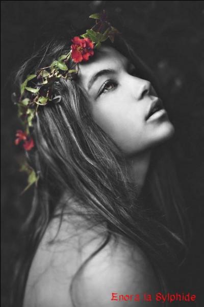 """Qui chantait """"Si tu t'appelles Mélancolie, si l'amour n'est plus qu'une habitude, ne me raconte pas ta vie..."""" ?"""