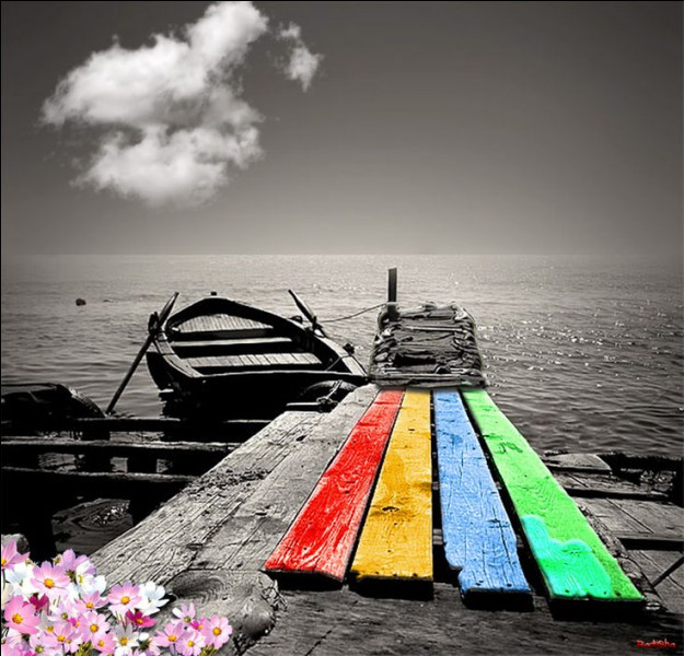 """Qui a écrit """"La mélancolie, c'est le bonheur d'être triste"""" dans son livre """"Les Travailleurs de la mer"""" ?"""