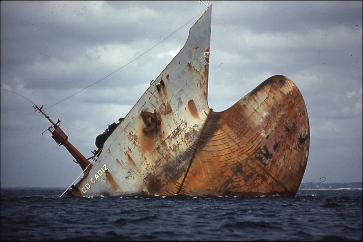 Le 16 mars 1978, l'Amoco Cadiz a fait naufrage sur les côtes bretonnes. Sur 1300 km²...
