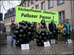 Le principe du pollueur-payeur dispose que :