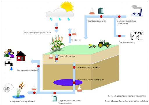 La lixiviation du sol contribue à/ au :
