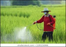 Les néonicotinoïdes sont des substances insecticides utilisées pour :