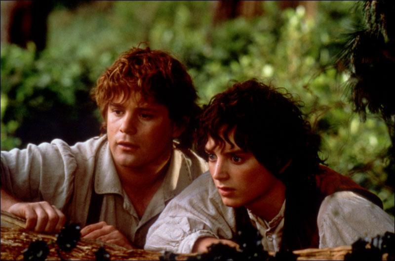 Qui sont ces deux hobbits ?