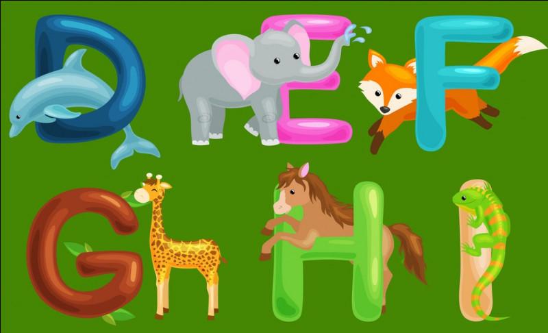Combien de lettres de base y a-t-il dans l'alphabet français ?