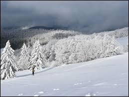 "Qui chante ""Tombe la neige"" ?"