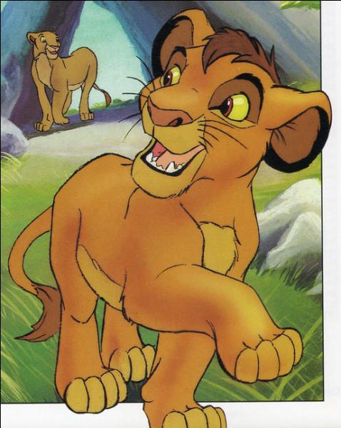 """Qui est ce lionceau fils de Simba le """"Roi lion"""" et de Nala son épouse ?"""