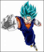 Quel est le nom de la fusion entre Son Goku et Vegeta avec les potalas ?