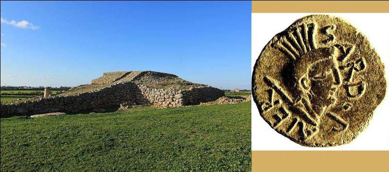 C'est l'un des rares peuples pré-indo-européens ayant laissé des traces génétiques et archéologiques : ils vivent toujours dans une grande île de la Méditerranée. Qui et où ?