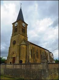 Nous sommes dans le Grand-Est devant l'église de l'Assomption de la Vierge de Labeuville. Village de l'arrondissement de Verdun, il se situe dans le département ...